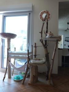 Chatterie Coon Toujours, Arbre à Chats en bois flotté, bricolage fait maison